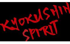 Kyokushin Spirit